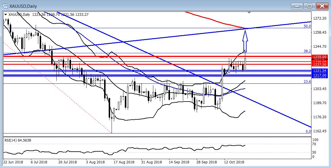 黄金:美元回落美股重挫,黄金两重提振下突破1235