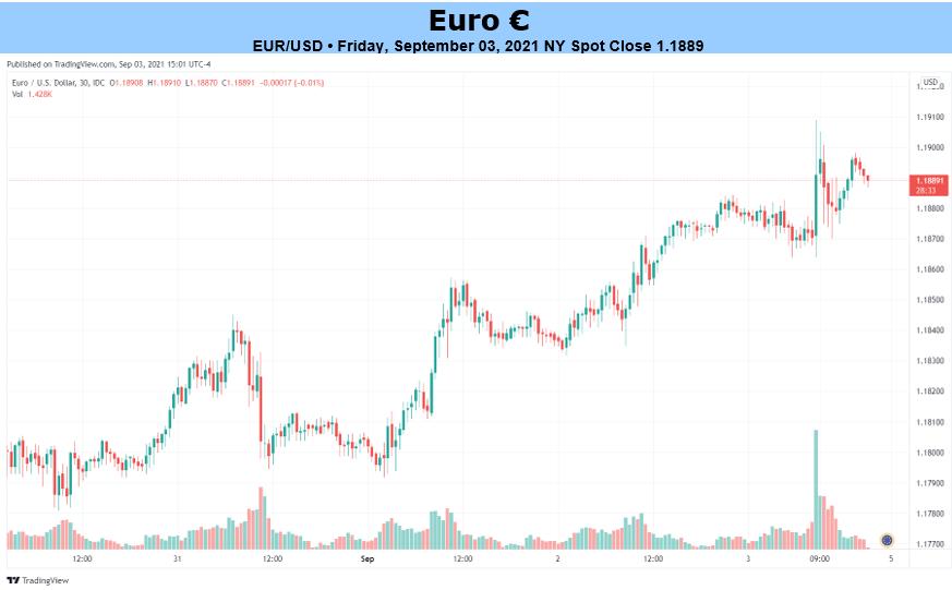欧元展望:欧元/美元前景看跌,欧央行会议鸽派或占多数